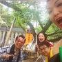 彦八祭り〜♫