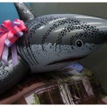 。。サメさんがお嫁に…