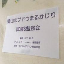 岡山のブドウ丸かじり…