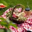 ♪秋のピクニックコン…