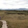 「苗場山」の大湿原。…