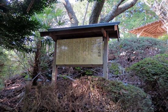 【写8】朝日山城