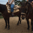 木曽馬に乗る