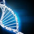 <第6回DNAメソッ…