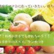 【ママハピ柏】10/…