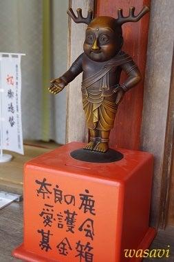 春日大社の鹿さん4