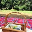 picnic♪