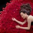『薔薇のように咲いて…