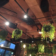 花屋カフェ
