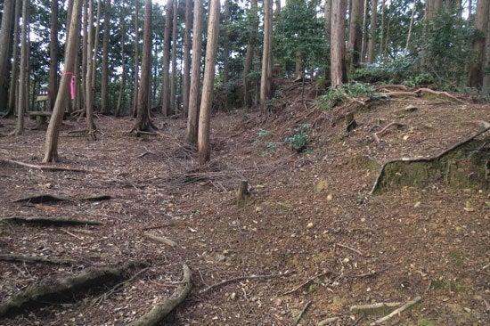 【写11】丸子城