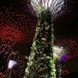 シンガポール超弾丸ツ…