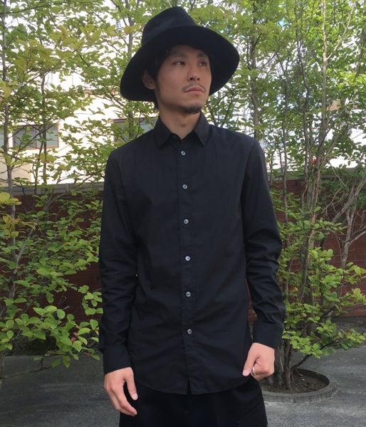8-ripe-hashimoto