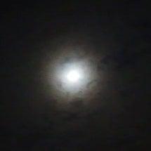 中秋の名月~☆