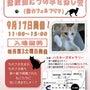 第3土曜は保護猫たち…
