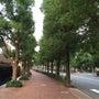 恵比寿ガーデンプレイ…