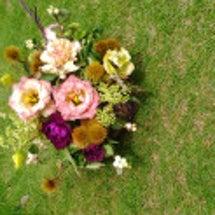 9月のお花