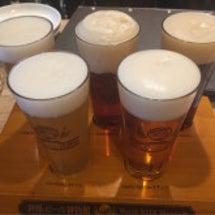 世界のビール飲み比べ…