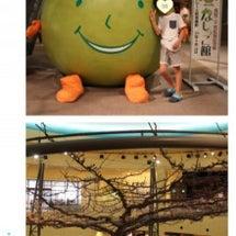 鳥取旅行④なしっこ館…