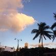 ハワイはサンセットタ…