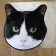 白黒猫タオル!