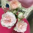 プロポーズの花束を …