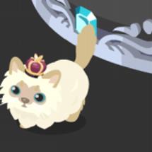 王冠のペルシャネコを…