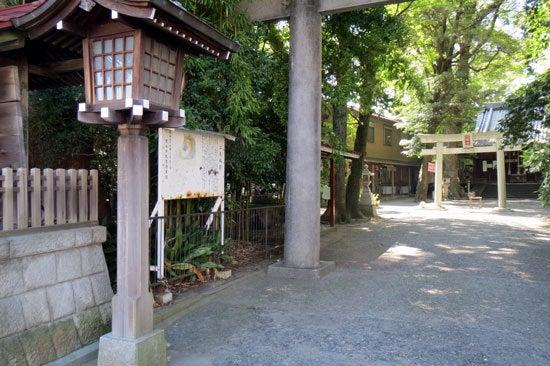 【写8】江尻城