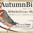 AutumnBird…