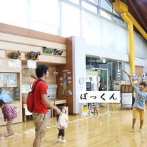 静岡にキャンプに行っ…
