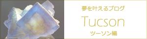 夢を叶えるブログ「ツーソン編」