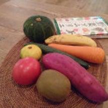 野菜の魅力を再発見!…