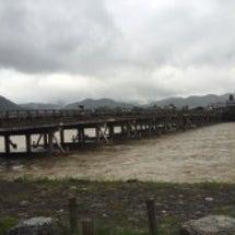 京都嵐山の桂川はメコ…