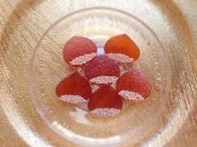 栗のシロップの琥珀糖