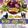 9/25(日)【ナイ…
