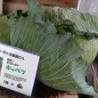 下野マルシェ お野菜…