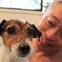 水素風呂と犬