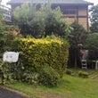 徳島の阿南でBBQ