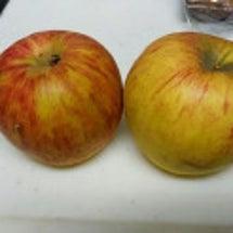 秋はリンゴジャム