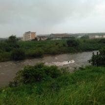 『日野川の状況です!…