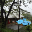 【茨城県】竜神大吊橋…