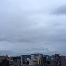 今朝は雨の札幌です。