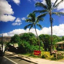 ハワイのダイジェスト…