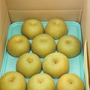 芳賀町特産品「梨」入…