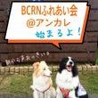 BCRNふれあい会@…