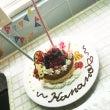 Hanaさん2歳!