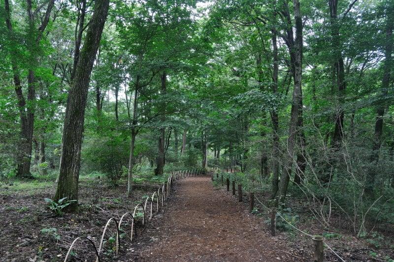 赤城自然園627