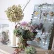 松山市本町にある花の…