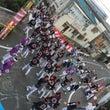 今年のだんじり祭り!