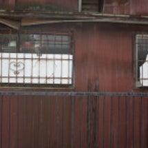 紙兎ロペ背景撮影場所…