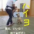 いぬ友わん*ピース★…